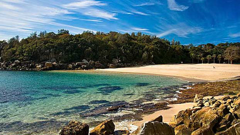 Top 10 best beaches in Sydney Shelly Beach