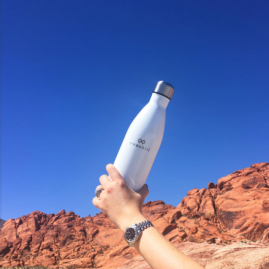 Evachill reusable bottle (sample sale)
