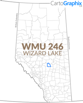 WMU 246 Wizard Lake