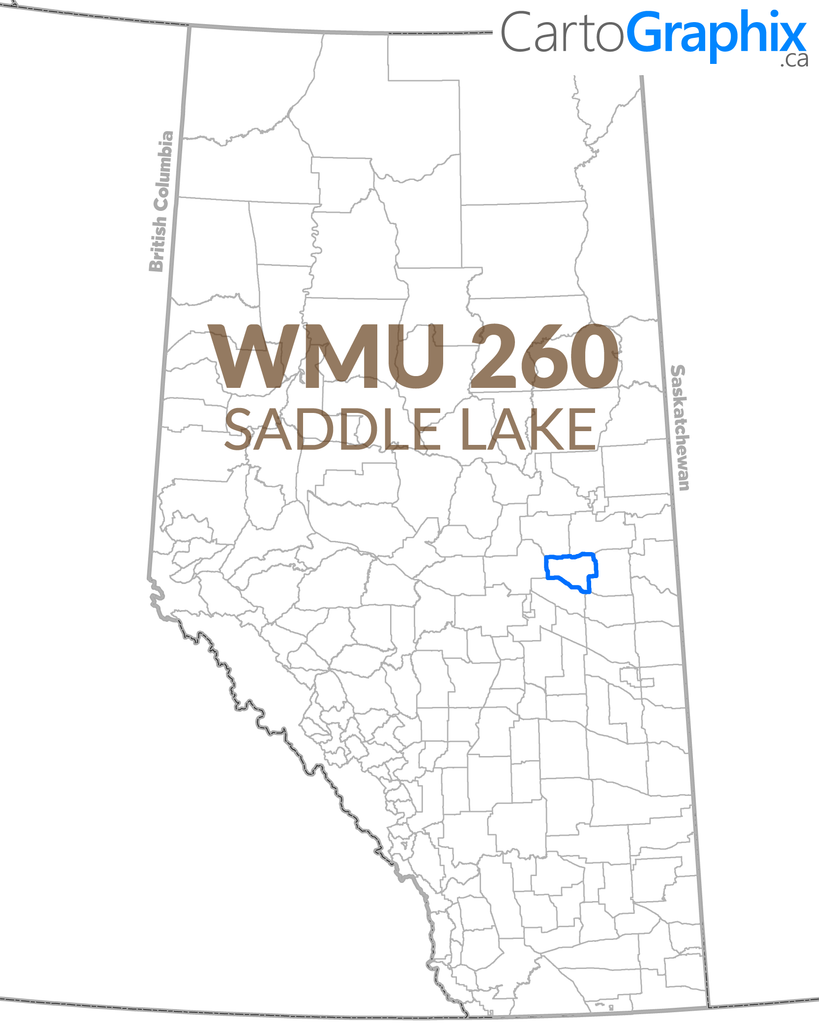 WMU 260 Saddle Lake Map