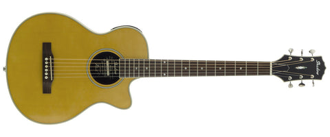 JMS 50 VSHG Steel String Acoustic Guitar