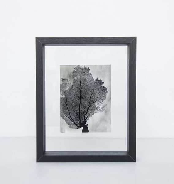 Photo frame floating - Small black - Urban Nature Culture
