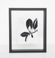 Photo frame floating - Medium black - Urban Nature Culture