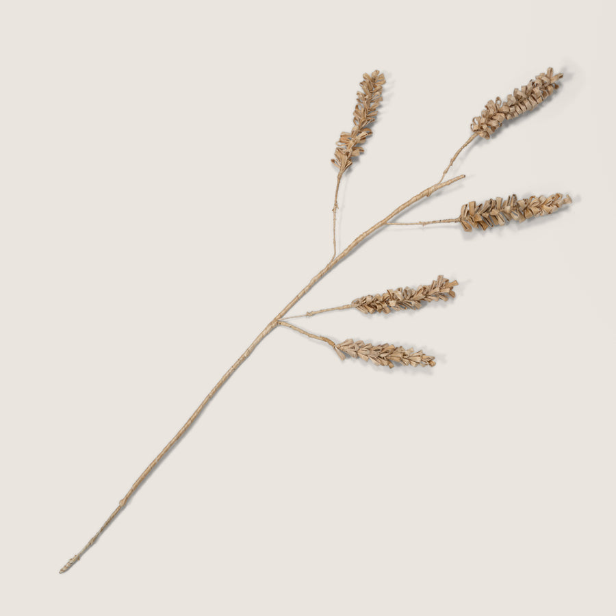Planta decorative cereal 5-stem - Urban Nature Culture