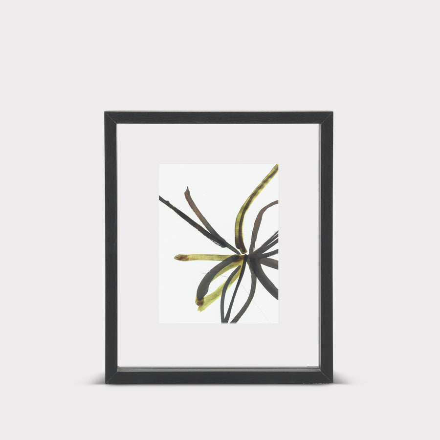 Floating frame Minimalism M, black - Urban Nature Culture