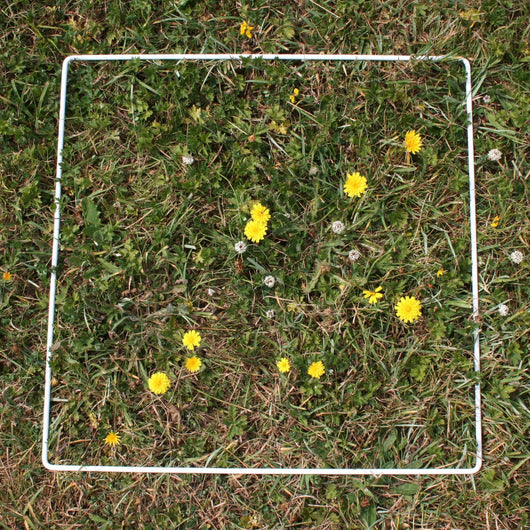 Fieldwork Equipment - Quadrats - For Sampling Plants
