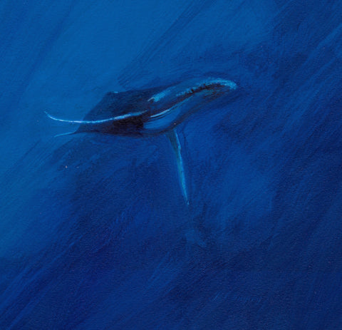 Humpback Limited Edition Print