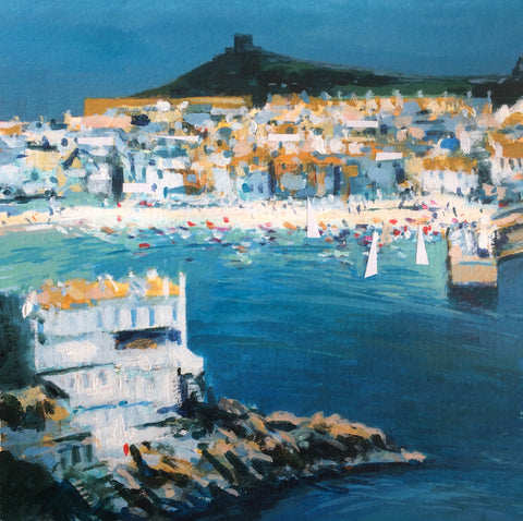 Seagulls view - St Ives Print