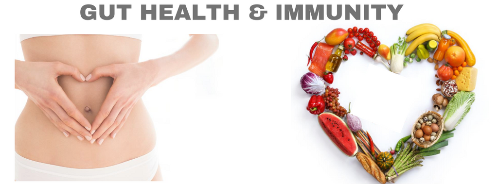 GUT HEALTH AND IMMUNITY
