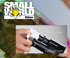 LabCam users takes Nikon Small World Competition 2 years in a row