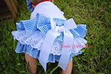 Baby Girls Dorothy Costume, Girls Wizard of Oz Dorothy Bloomer Outfit