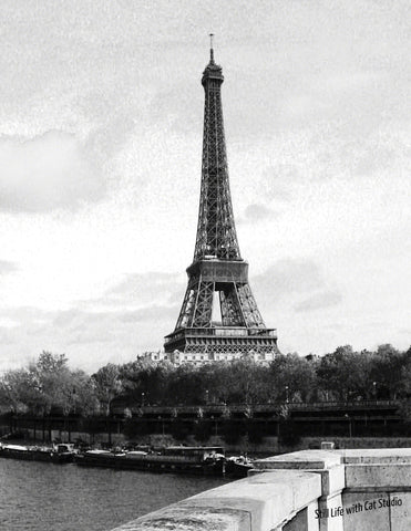 Eiffel Tower -Art Photograph in Black and White
