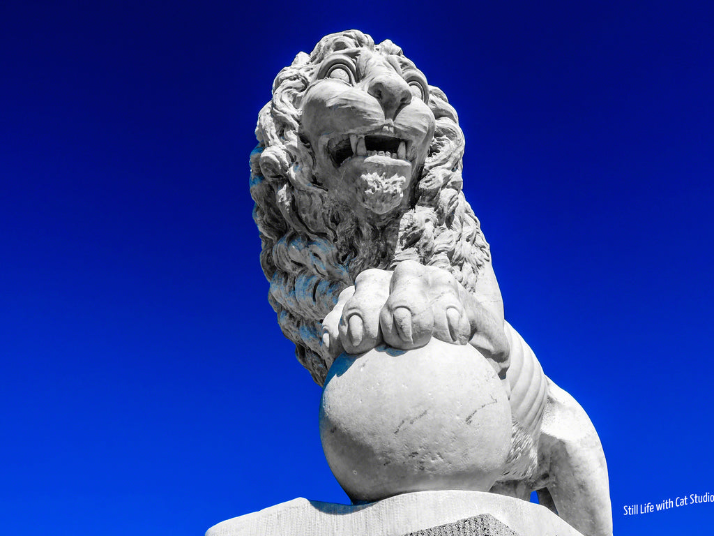 Historic St Augustine, FL-  Lion of the Bridge