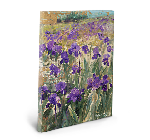 Wisdom of the Irises Gallery Wrapped Canvas