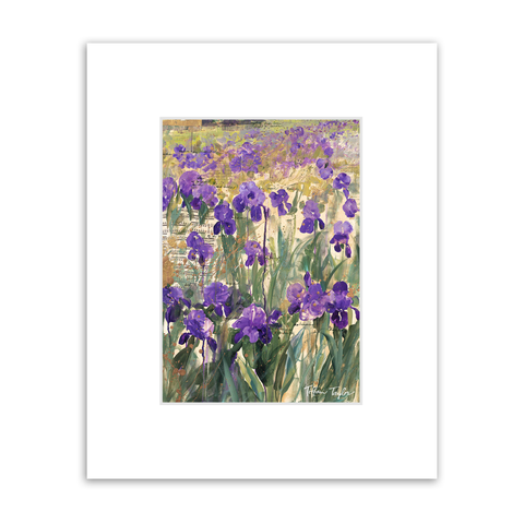Wisdom of the Irises Matted Print
