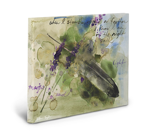 Feather Gallery Wrapped Canvas