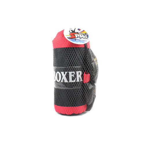 Boxing Play Set with Gloves (6)