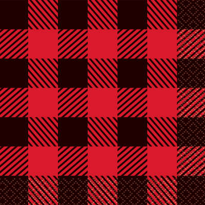 Plaid Lumberjack Beverage Napkins 16ct