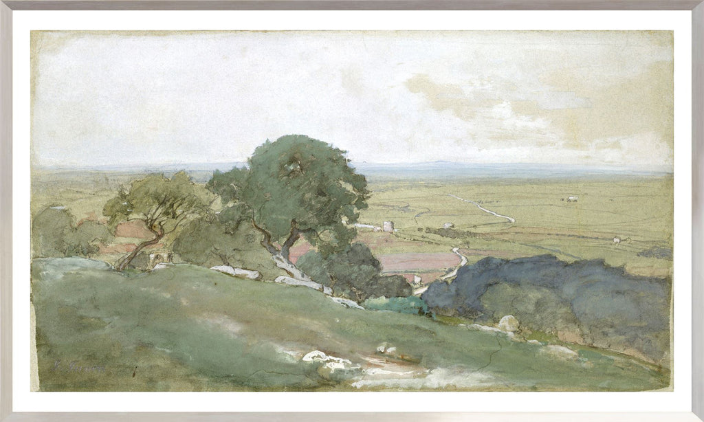 Olive Trees at Tivoli - Full Size Landscape