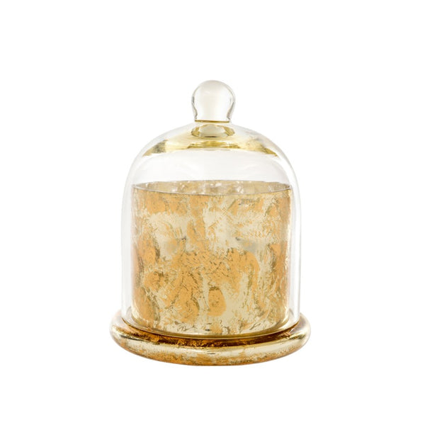 Amber Spruce Scented Candle - Cloche / Large