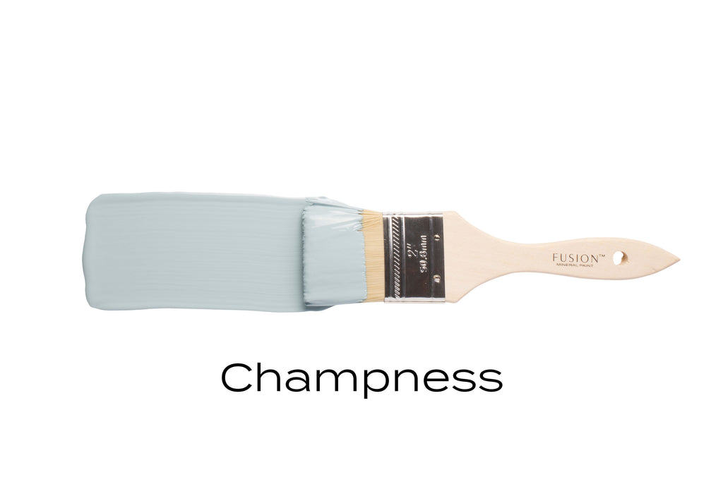 Fusion Paint: Champness TESTER