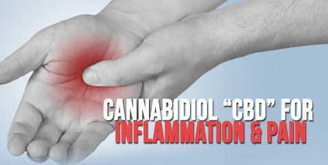 CBD for Inflammation and Pain study conducted by PubMed.Gov
