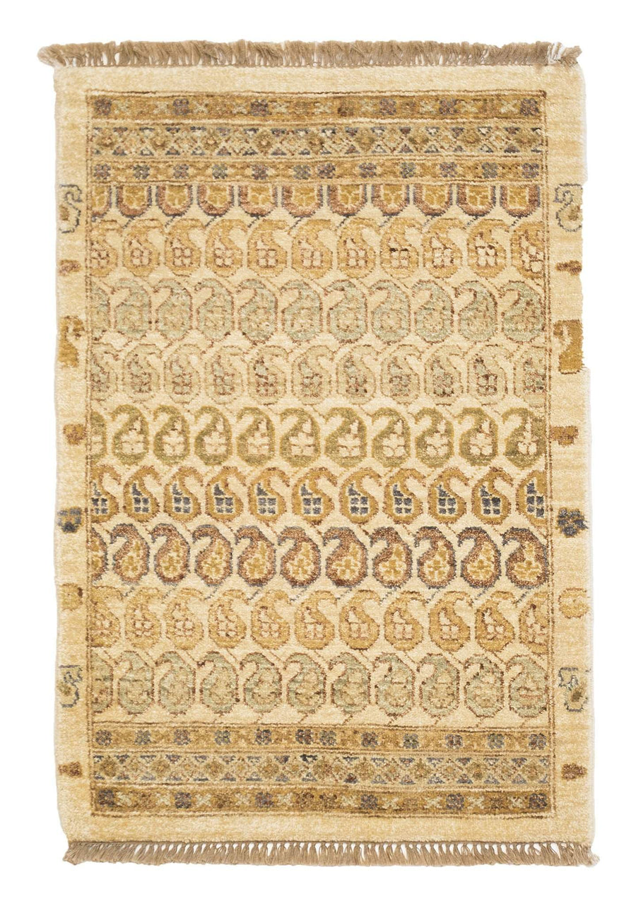 Paisley Hand Knotted Wool 2 'x 3 ' Small Area Rug Beige