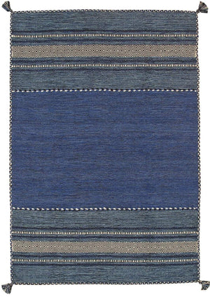Transitional Rustic Kilim Cotton Area Rugs