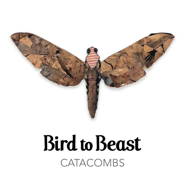 'Bird to Beast - Catacombs' CD single cover