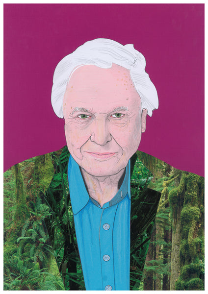 NEW PRINT - 'Sir David Attenborough'
