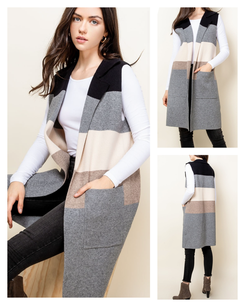 Collins Colorblock  Knit Vest by THML Clothing