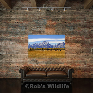 landscape photography print with horses