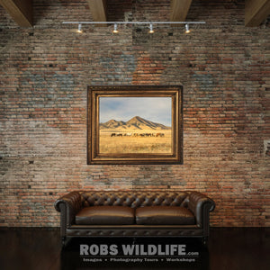 Grazing Horses, Wild Mustangs, Western Art by Rob's Wildlife