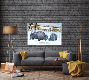 buffalo in the snow, rustic wall art