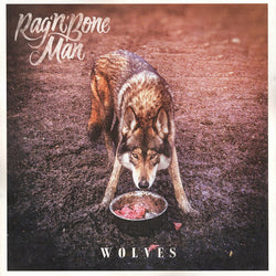 Rag'n'Bone Man : Wolves (12
