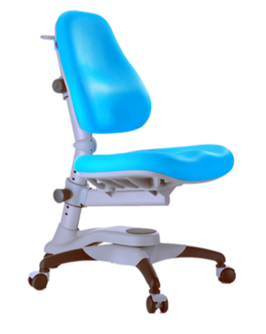 Y618 Oxford Ergonomic Chair / Blue