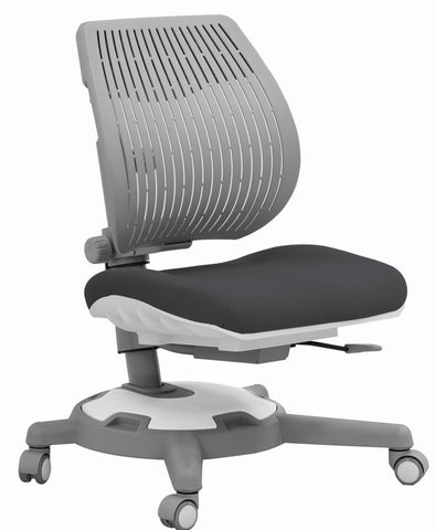 Y1018 Ultra Back Ergonomic Chair/Grey & Grey