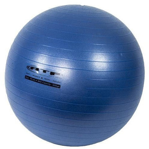 ATF Sports Swiss Ball - Top Nutrition and Fitness Canada