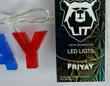 FRIYAY Multi-Color LED String Lights