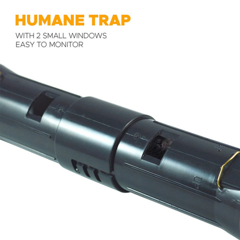 Humane Tunnel Mole Trap - Easy Set Up - Easy Release