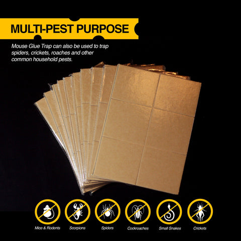 Pre-Baited Peanut Butter Scented Mouse and Insect Glue Board Trap - 10 Pack