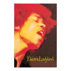 Electric Ladyland Postcard
