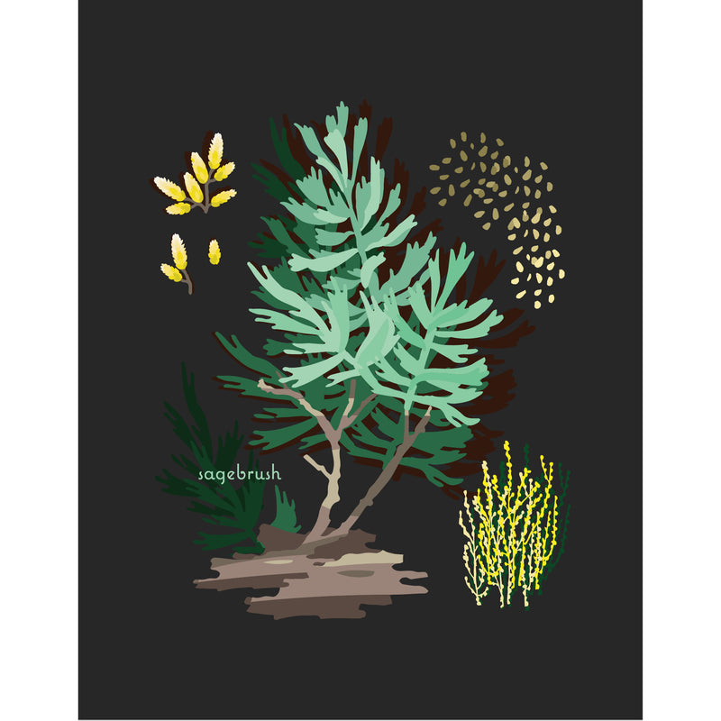 """Sagebrush"" Desert Botanical Card by Holli Zollinger"