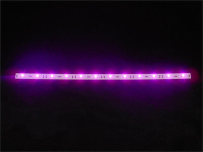 Replacement LED Light Set - Purple - SafeSpecial