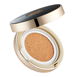 THEFACESHOP BB POWER PERFECTION CUSHION SPF50+ PA+++ - THEFACESHOP Australia