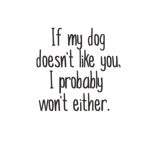Magnet: If my dog doesn't like you, I probably won't either.