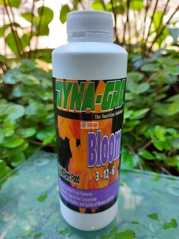 Dyna-Gro Bloom (3-12-6) 250ML