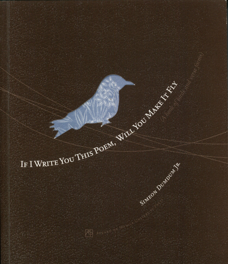 If I Write You this Poem, Will You Make It Fly: A Book of Birds and Verse Forms