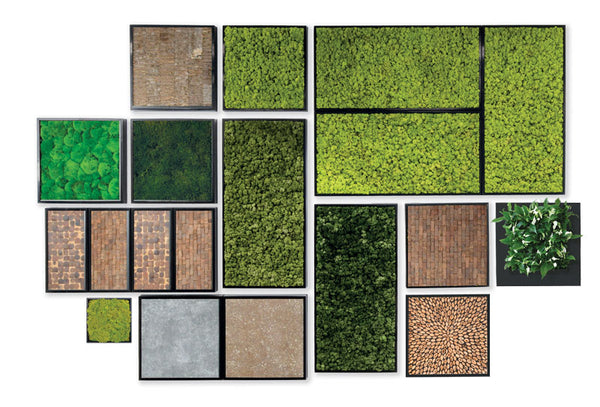 48x24 Moss Wall Art Panels design and work with Plantups other sizes and inserts