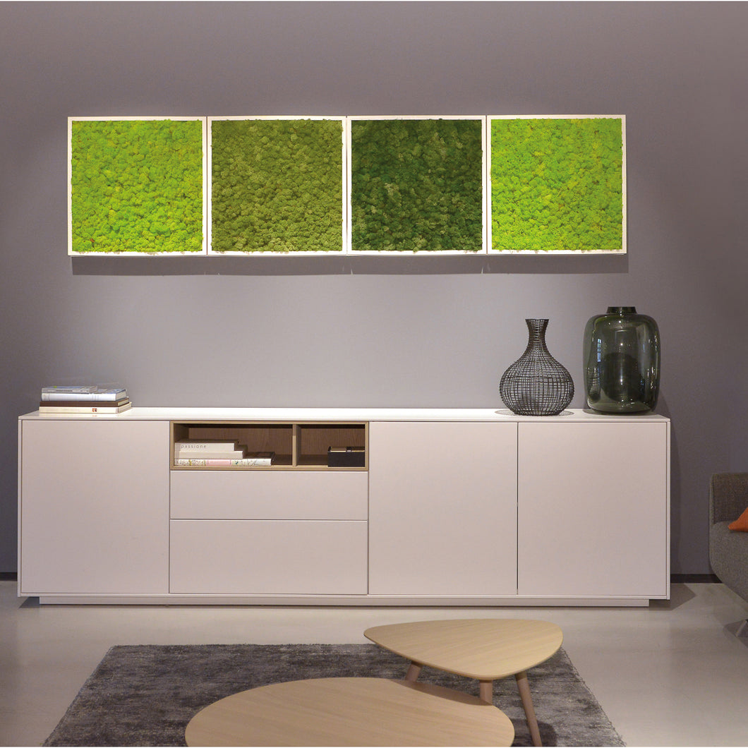 Use preserved moss wall art to create a one-of-a-kind wall by combining preserved moss for your green design